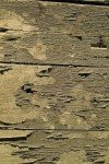 fs lemn 1 - CELE 5 ELEMENTE DE BAZA IN FENG SHUI
