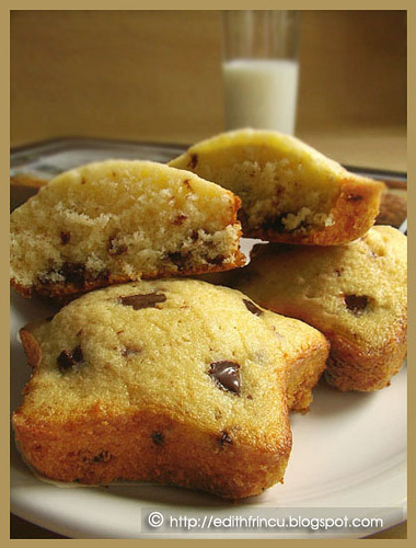 Chocolate chip muffins 1