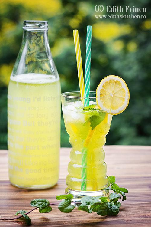 limonada cu roinita 2 - Limonada cu roinita
